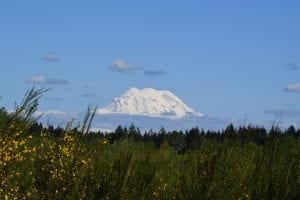 View to Mount Rainier from Fort Lewis WA