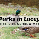 Parks in Lacey, WA - Tips, List, Guide, & Map